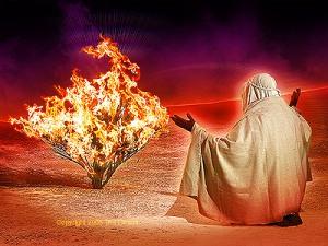 Moses' burning bush
